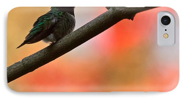 IPhone Case featuring the photograph On Guard by Robert L Jackson