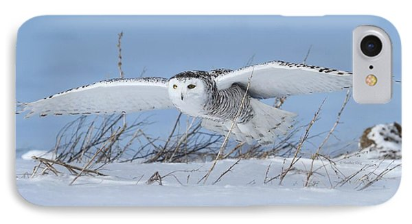 On Patrol IPhone Case by Heather King