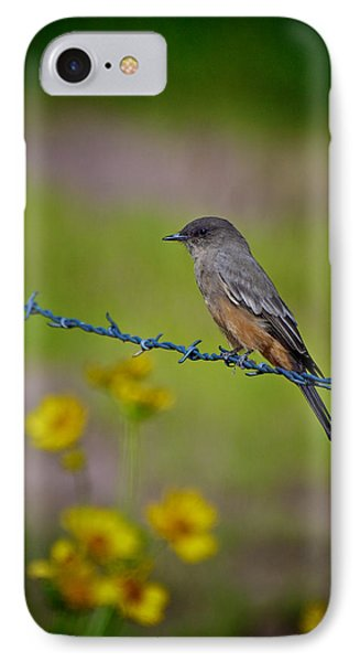 IPhone Case featuring the photograph Say's Phoebe by Britt Runyon