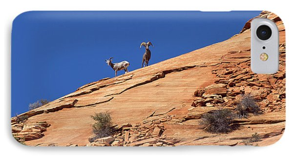 On The Lookout IPhone Case by Elvira Butler