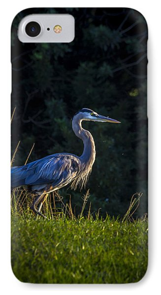Egret iPhone 7 Case - On The March by Marvin Spates