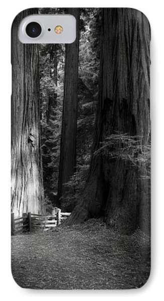 On The Trail At Sunrise IPhone Case by Mark Alder