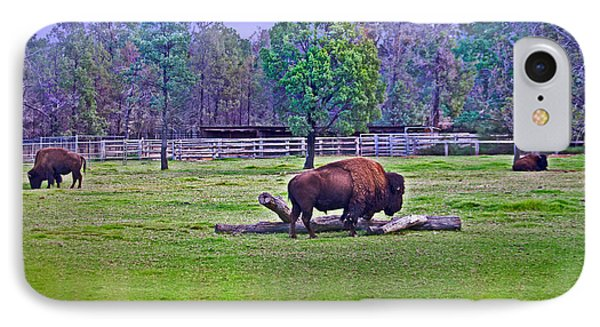 One Bison Family IPhone 7 Case by Miroslava Jurcik