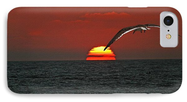 One Black Skimmers At Sunset IPhone Case by Tom Janca