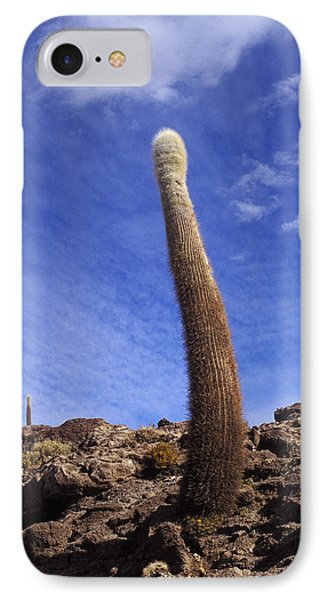 IPhone Case featuring the photograph One Enormous Cactus by Lana Enderle
