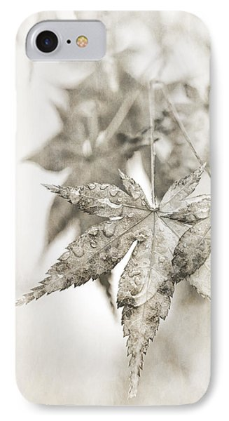 One Misty Moisty Morning IPhone Case