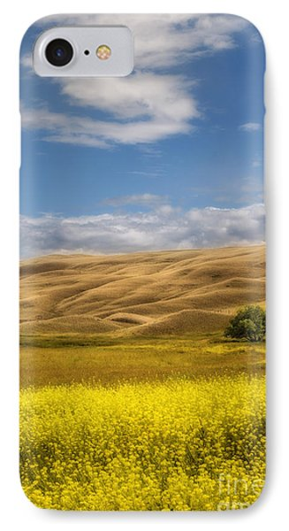 One IPhone Case by Sandi Mikuse