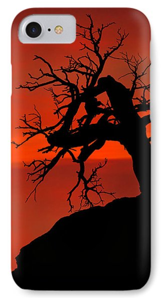 One Tree Hill Silhouette IPhone Case by Greg Norrell