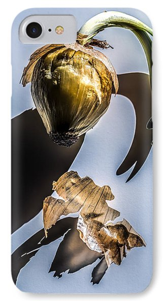 Onion Skin And Shadow IPhone Case by Bob Orsillo
