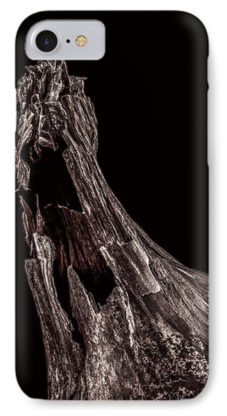 Onion Skin Two IPhone Case by Bob Orsillo
