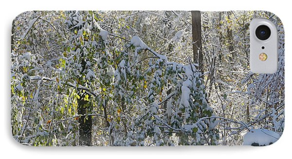 IPhone Case featuring the photograph Onset Of Winter 2 by Rudi Prott