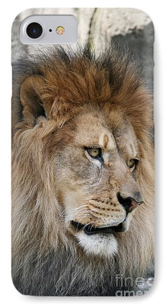 IPhone Case featuring the photograph Onyo #4 by Judy Whitton