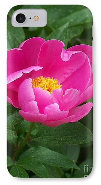 IPhone Case featuring the photograph Peony  by Eunice Miller