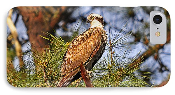 Opulent Osprey Phone Case by Al Powell Photography USA