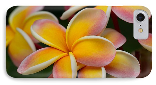 Orange And Pink Plumeria IPhone Case by Roger Mullenhour