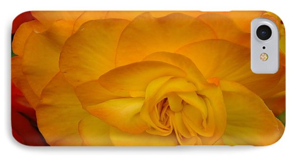 IPhone Case featuring the photograph Orange Begonia by Gene Cyr