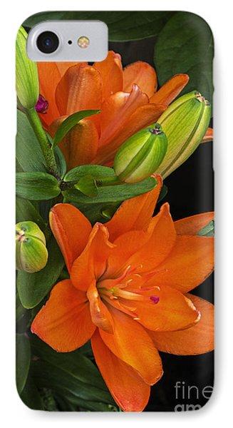 IPhone Case featuring the photograph Orange Burst by Robert Pilkington