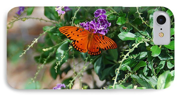 Orange Butterfly IPhone Case by Aimee L Maher Photography and Art Visit ALMGallerydotcom