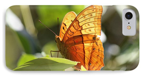 IPhone Case featuring the photograph Orange Butterfly by Jola Martysz