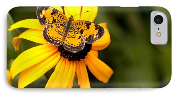 Orange Butterfly Phone Case by Lena Auxier