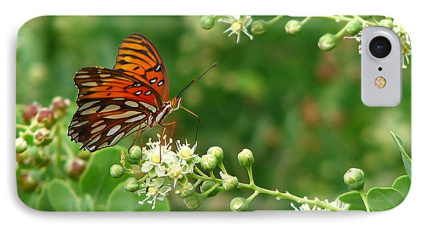 IPhone Case featuring the photograph Orange Butterfly by Marcia Socolik