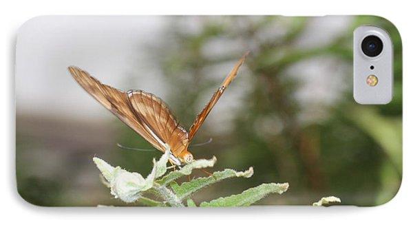 Orange Butterfly On Fern IPhone Case