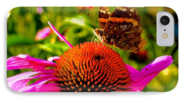 IPhone Case featuring the photograph Orange Butterfly  by Sarah Mullin