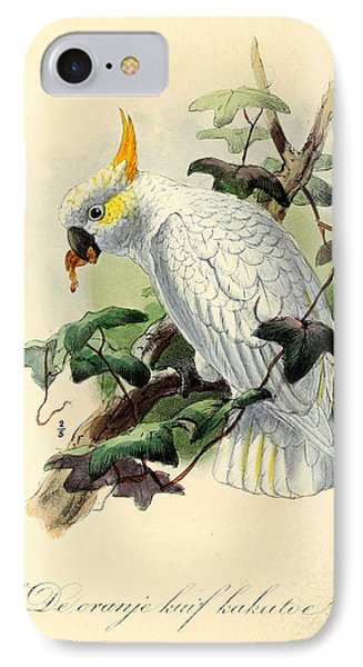 Orange Cockatoo IPhone Case by Rob Dreyer