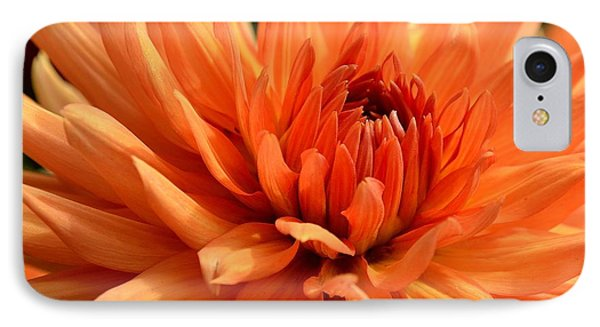 Orange Dahlia IPhone Case