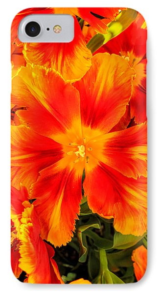 Orange Flames IPhone Case by Pat Cook