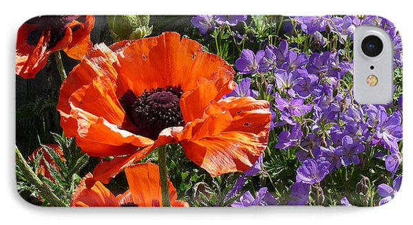 Orange Flowers IPhone Case by Alan Socolik