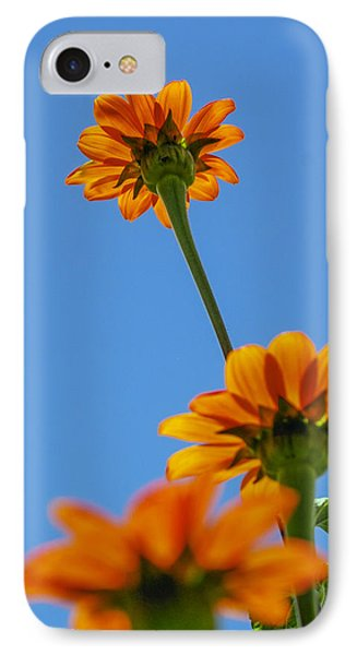 Orange Flowers On Blue Sky IPhone Case by Debbie Karnes