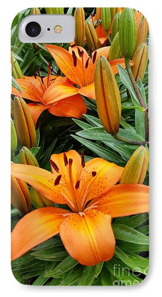IPhone Case featuring the photograph Orange Flowers by Rose Wang