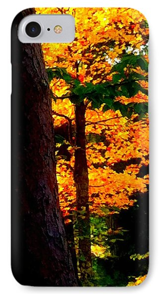 IPhone Case featuring the photograph Orange Foliage by Denyse Duhaime
