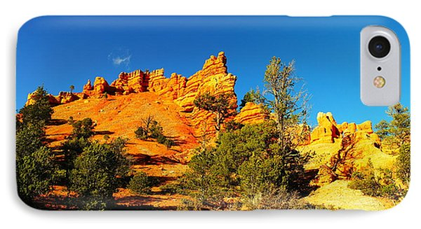 Orange Foreground A Blue Blue Sky  Phone Case by Jeff Swan