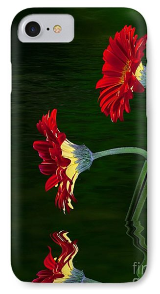 IPhone Case featuring the photograph Orange Gerber by Shirley Mangini