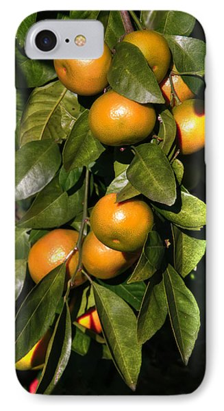 IPhone Case featuring the photograph Orange by Gouzel -