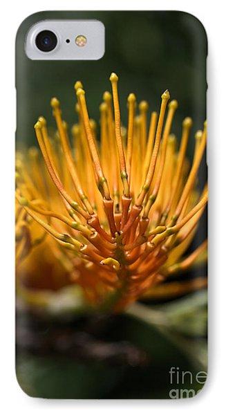 Orange Grevillea Phone Case by Joy Watson