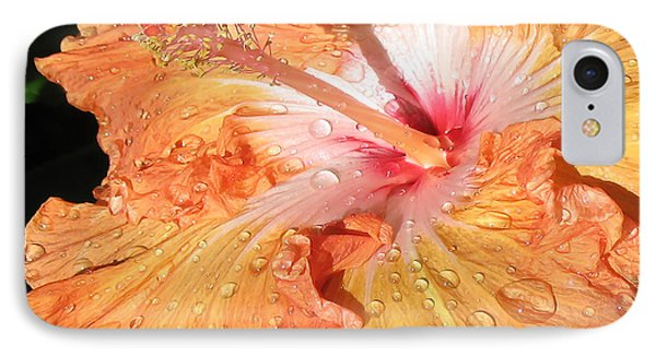 Orange Hibiscus After The Rain IPhone Case by Connie Fox