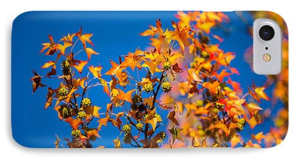 Orange Leaves Phone Case by Mike Lee