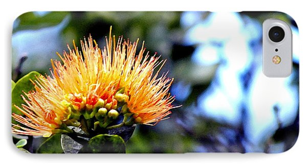 IPhone Case featuring the photograph Orange Lehua On Volcano Ranch by Lehua Pekelo-Stearns