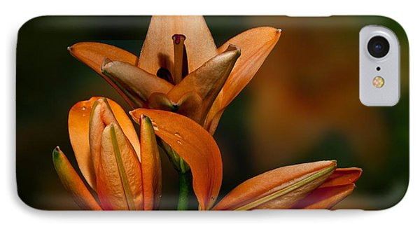 IPhone Case featuring the photograph Orange Lilies by Shirley Mangini