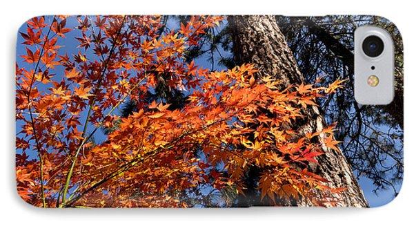 Orange Maple IPhone Case