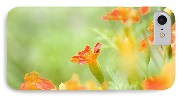 IPhone Case featuring the photograph Orange Meadow by Ann Lauwers
