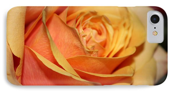 IPhone Case featuring the photograph Orange Passion by Judy Palkimas