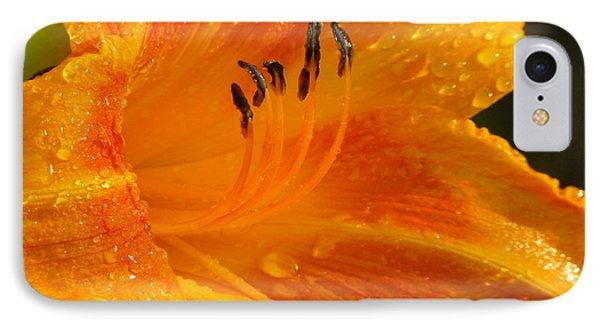 Orange Rain Phone Case by Karen Wiles