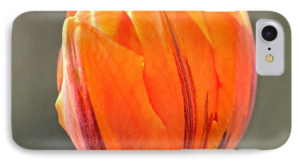 Orange Red Tulip Square Phone Case by Sandi OReilly