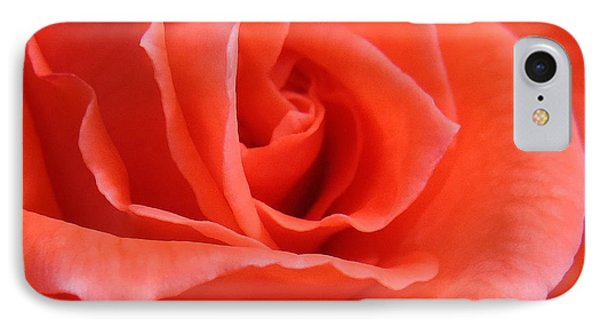 Orange Rose IPhone Case