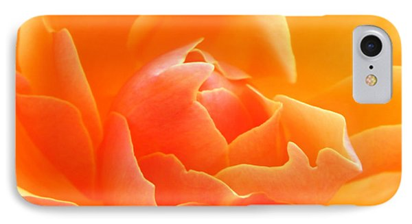 IPhone Case featuring the photograph Orange Sherbet by Deb Halloran