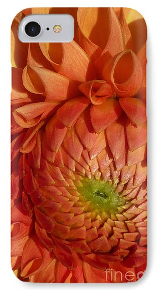 IPhone Case featuring the photograph Orange Sherbet Delight Dahlia by Susan Garren